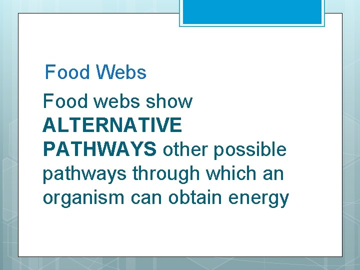 Food Webs Food webs show ALTERNATIVE PATHWAYS other possible pathways through which an organism