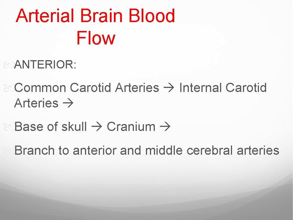 Arterial Brain Blood Flow ANTERIOR: Common Carotid Arteries Internal Carotid Arteries Base of skull