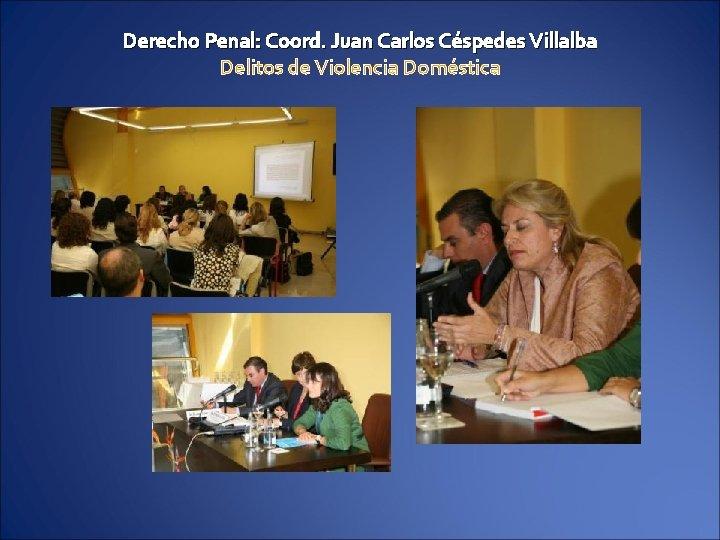 Derecho Penal: Coord. Juan Carlos Céspedes Villalba Delitos de Violencia Doméstica