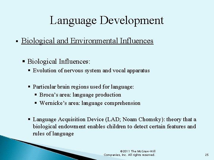 Language Development § Biological and Environmental Influences § Biological Influences: § Evolution of nervous