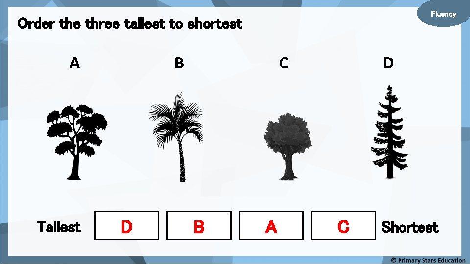 Fluency Order the three tallest to shortest A Tallest B D C B A