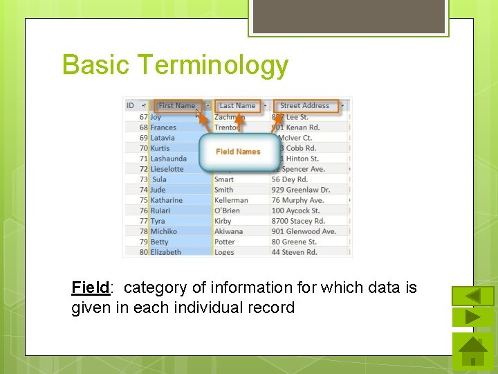 Basic Terminology Field: category of information for which data is given in each individual