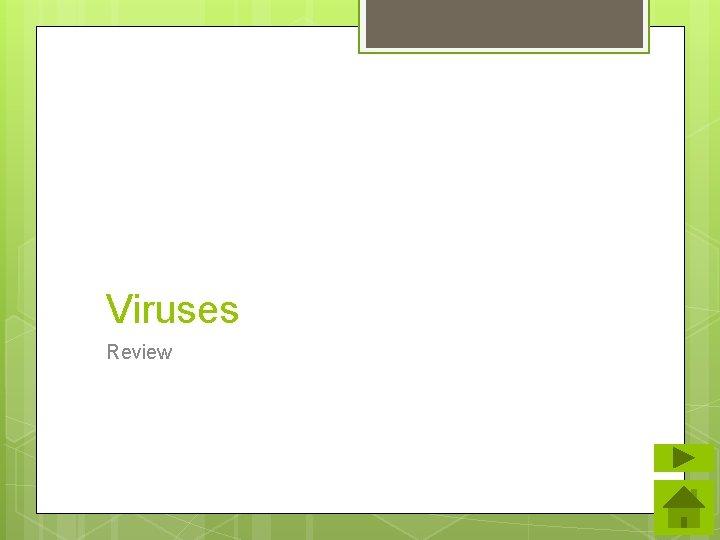 Viruses Review