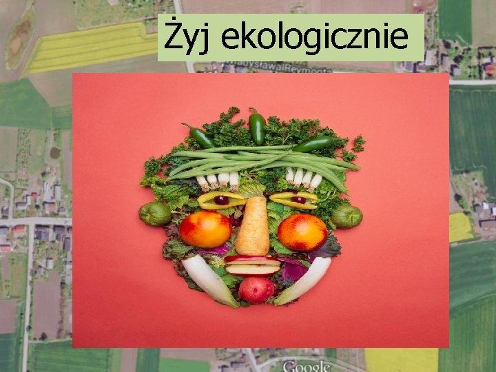Żyj ekologicznie
