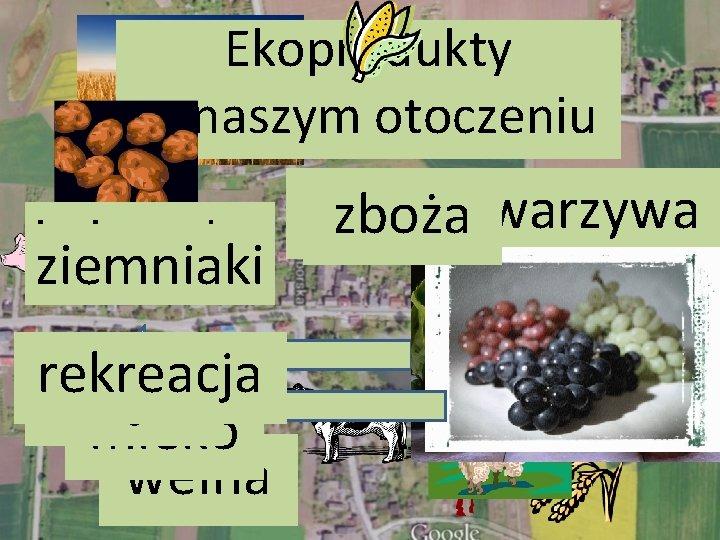 Ekoprodukty w naszym otoczeniu owoce winogrona warzywa zboża kukurydza ziemniaki rekreacja mięso mleko wełna