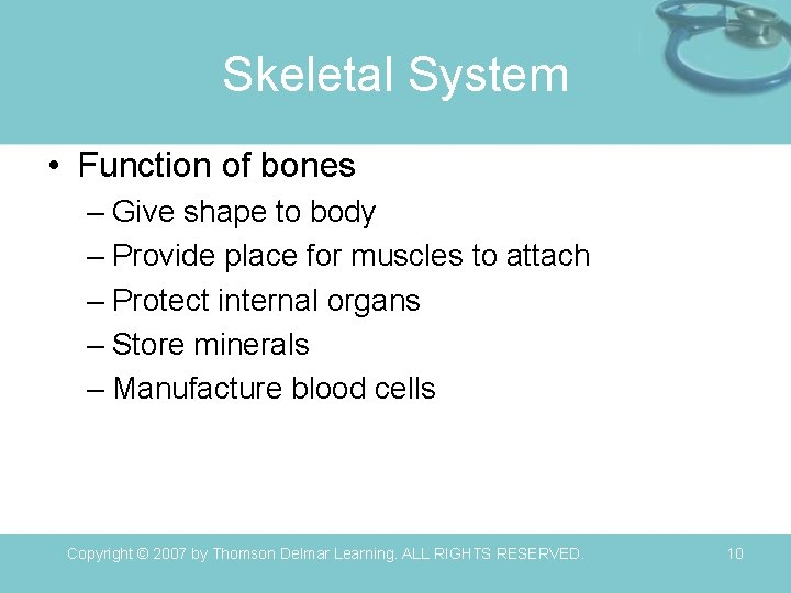 Skeletal System • Function of bones – Give shape to body – Provide place
