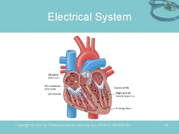 Electrical System Copyright © 2007 by Thomson Delmar Learning. ALL RIGHTS RESERVED. 34