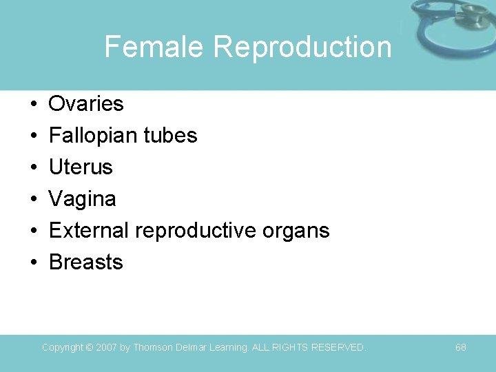 Female Reproduction • • • Ovaries Fallopian tubes Uterus Vagina External reproductive organs Breasts