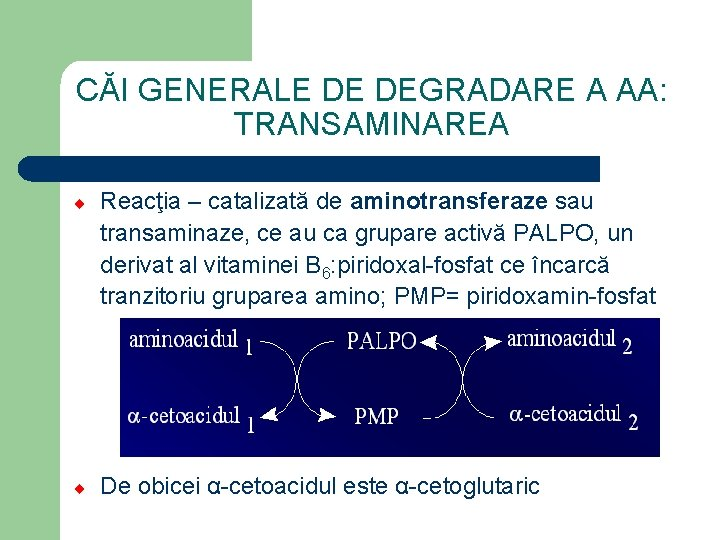 sarcoma cancer radiation treatment helmintox 250mg vartojimas