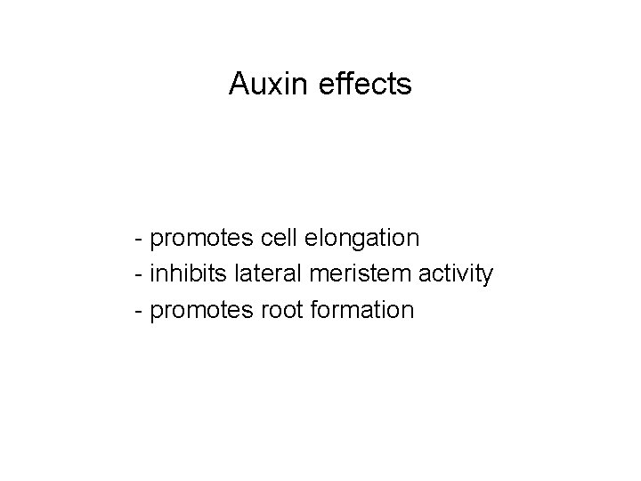 Auxin effects - promotes cell elongation - inhibits lateral meristem activity - promotes root