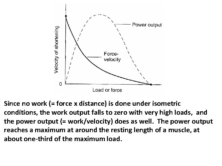 Since no work (= force x distance) is done under isometric conditions, the work
