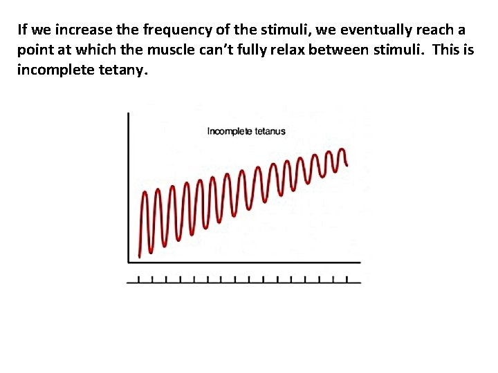 If we increase the frequency of the stimuli, we eventually reach a point at