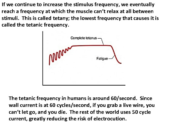 If we continue to increase the stimulus frequency, we eventually reach a frequency at