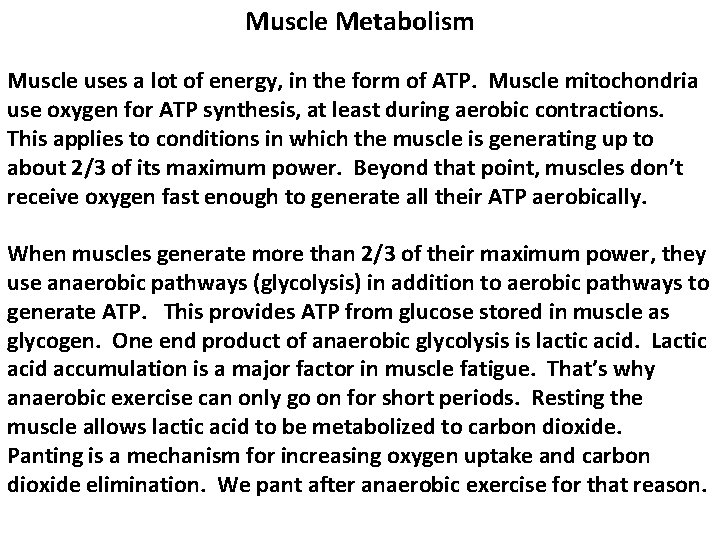 Muscle Metabolism Muscle uses a lot of energy, in the form of ATP. Muscle