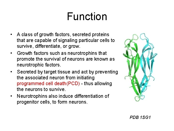 Function • A class of growth factors, secreted proteins that are capable of signaling