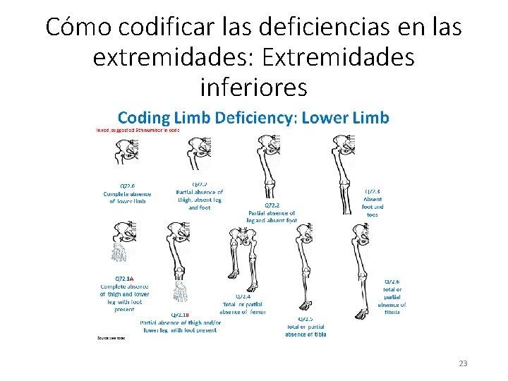 Cómo codificar las deficiencias en las extremidades: Extremidades inferiores 23