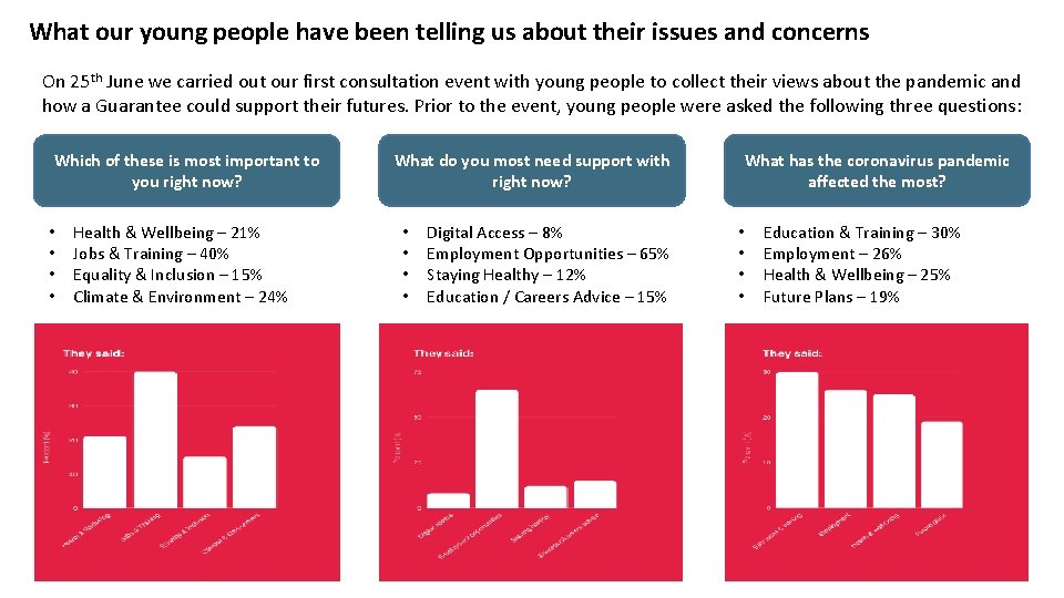 What our young people have been telling us about their issues and concerns On