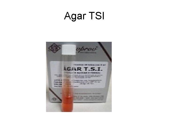 Agar TSI