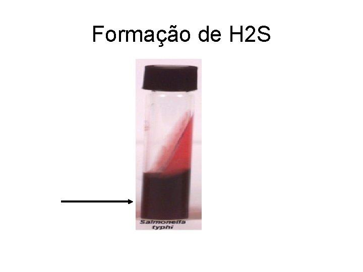 Formação de H 2 S