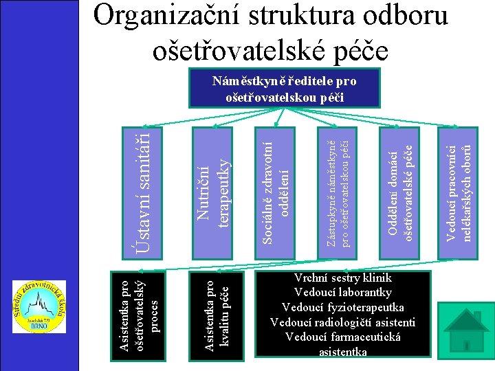 Asistentka pro kvalitu péče Asistentka pro ošetřovatelský proces Vrchní sestry klinik Vedoucí laborantky Vedoucí
