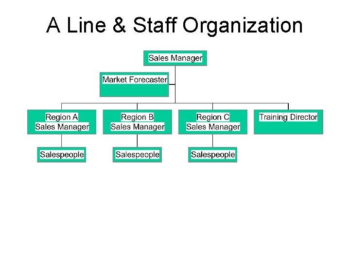 A Line & Staff Organization