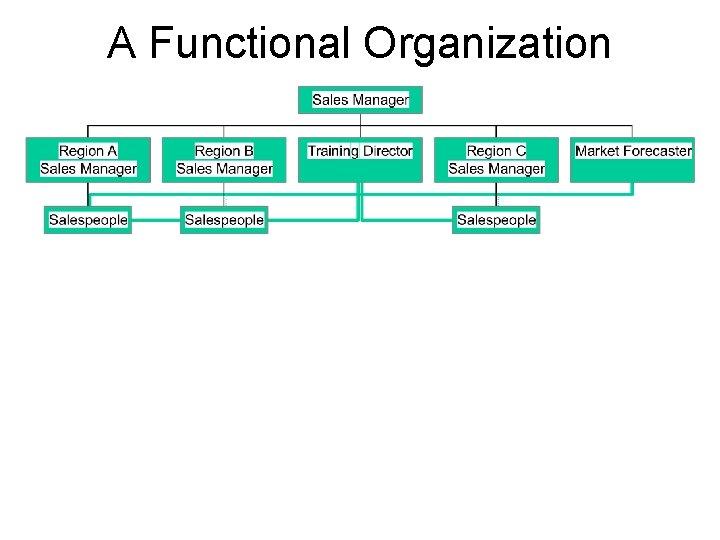 A Functional Organization