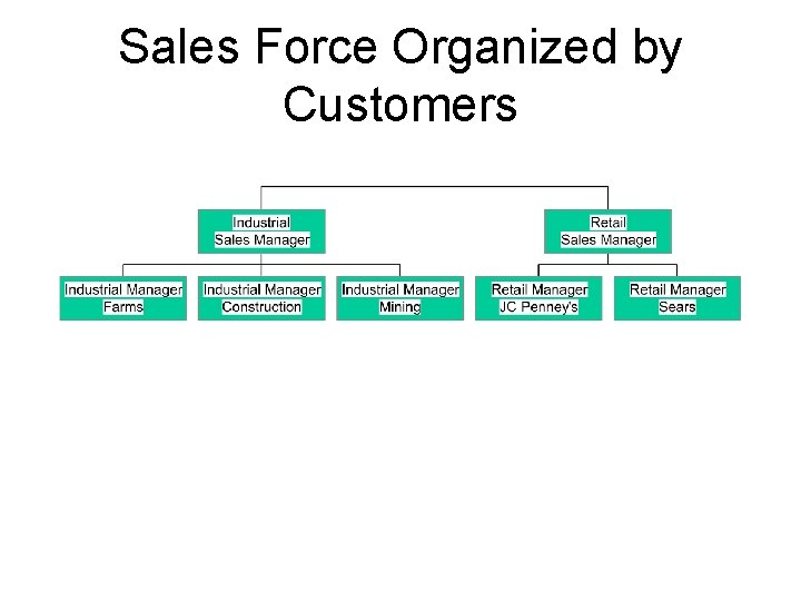 Sales Force Organized by Customers