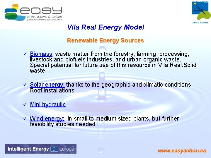 Vila Real Energy Model Renewable Energy Sources ü Biomass: waste matter from the forestry,