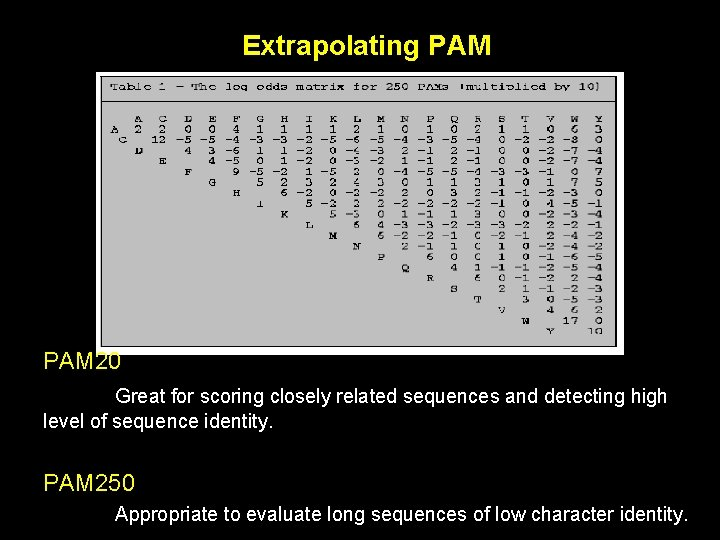 Extrapolating PAM 20 Great for scoring closely related sequences and detecting high level of