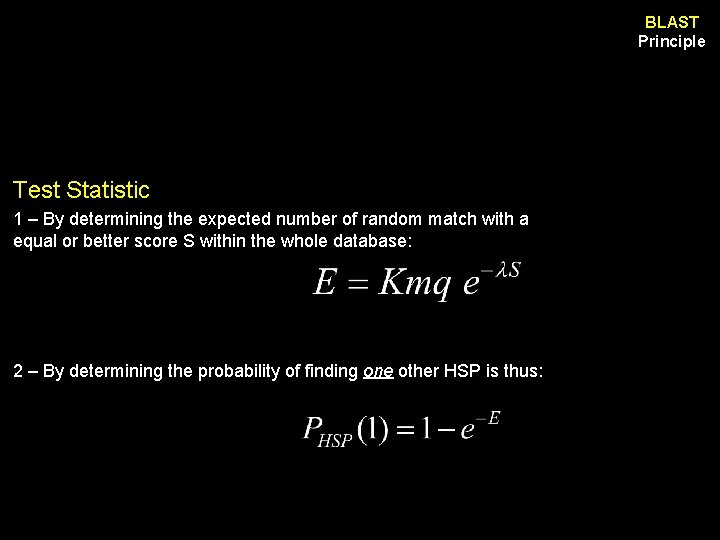 BLAST Principle Test Statistic 1 – By determining the expected number of random match