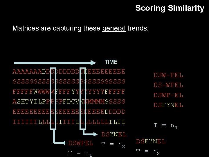 Scoring Similarity Matrices are capturing these general trends. TIME AAAAAAADDDDDEEEEE SSSSSSSSSSSSSS FFFFFWWWWWFFFFYYYYFFFFF ASHTYILPPPPPFDCVNNMMMMSSSSS EEEEEEEEEEEDDDDD