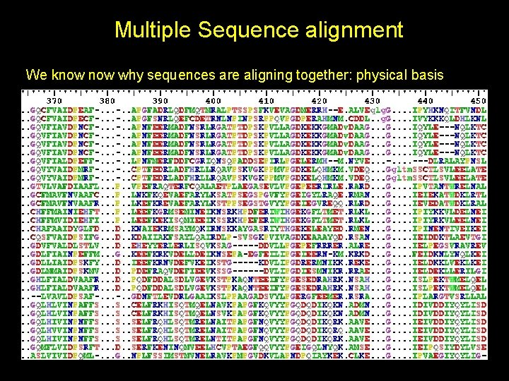 Multiple Sequence alignment We know why sequences are aligning together: physical basis