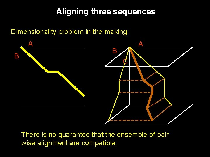 Aligning three sequences Dimensionality problem in the making: A B C There is no