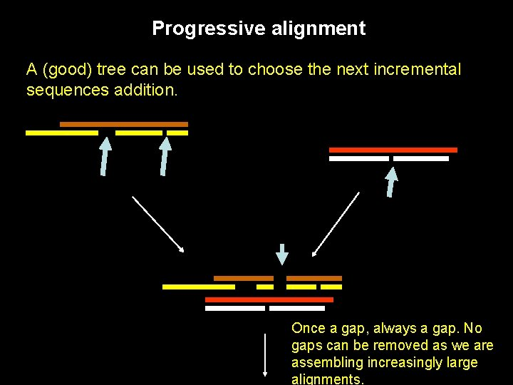 Progressive alignment A (good) tree can be used to choose the next incremental sequences