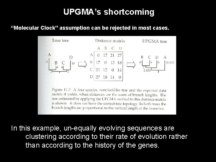 """UPGMA's shortcoming """"Molecular Clock"""" assumption can be rejected in most cases. In this example,"""