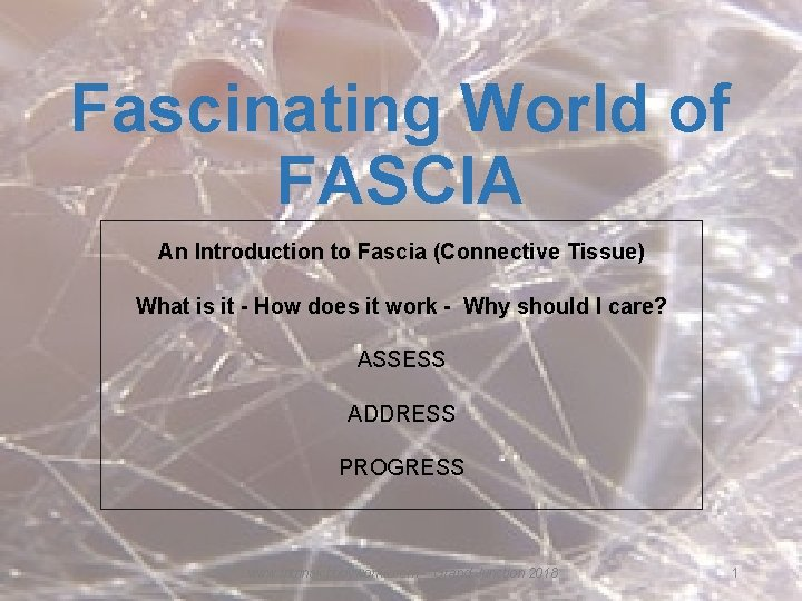 Fascinating World of FASCIA An Introduction to Fascia (Connective Tissue) What is it -