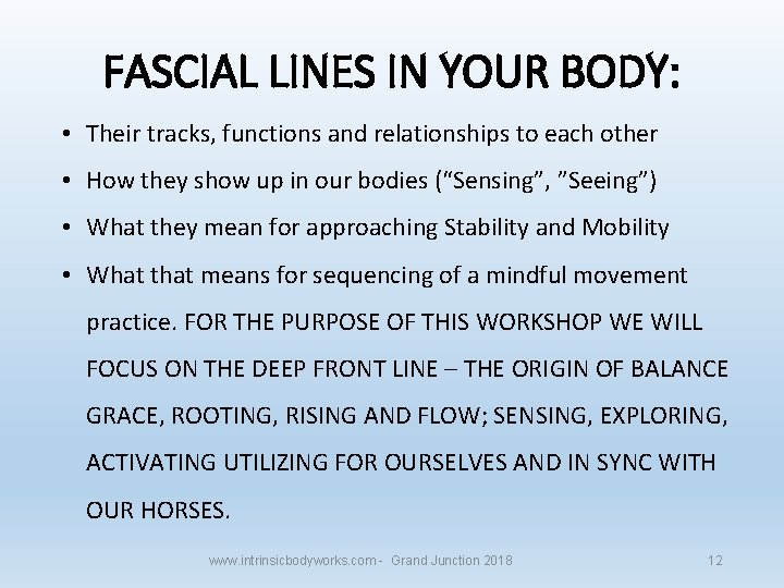 FASCIAL LINES IN YOUR BODY: • Their tracks, functions and relationships to each other