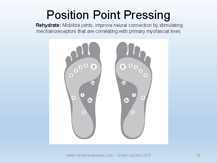 Position Point Pressing Rehydrate: Mobilize joints, improve neural connection by stimulating mechanoreceptors that are