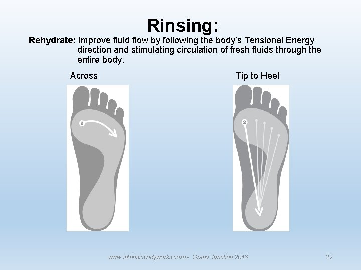 Rinsing: Rehydrate: Improve fluid flow by following the body's Tensional Energy direction and stimulating