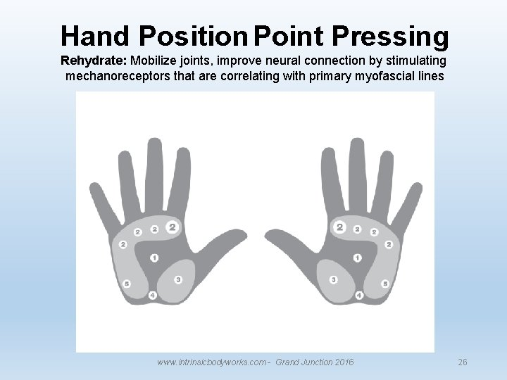 Hand Position Point Pressing Rehydrate: Mobilize joints, improve neural connection by stimulating mechanoreceptors that
