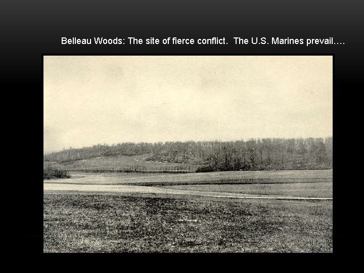 Belleau Woods: The site of fierce conflict. The U. S. Marines prevail….