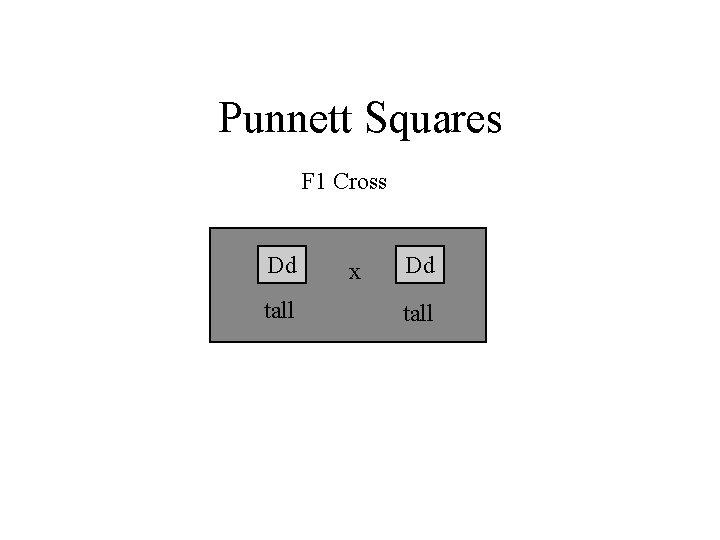 Punnett Squares F 1 Cross Dd tall x Dd tall