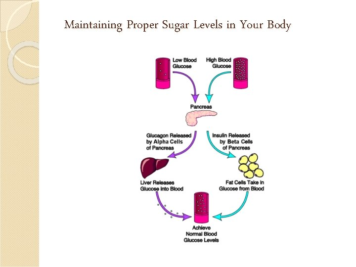 Maintaining Proper Sugar Levels in Your Body
