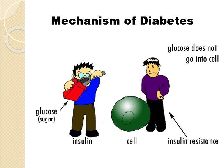 Mechanism of Diabetes