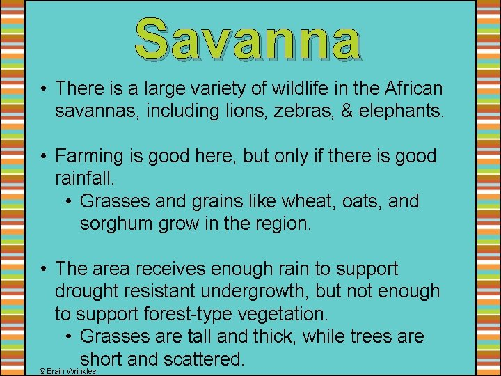 Savanna • There is a large variety of wildlife in the African savannas, including