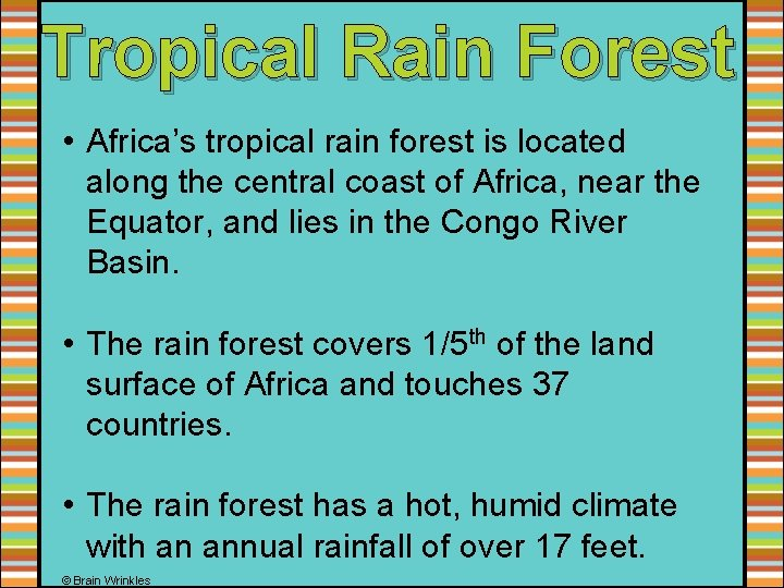 Tropical Rain Forest • Africa's tropical rain forest is located along the central coast
