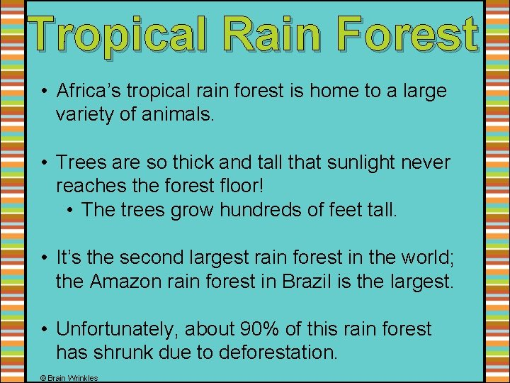 Tropical Rain Forest • Africa's tropical rain forest is home to a large variety