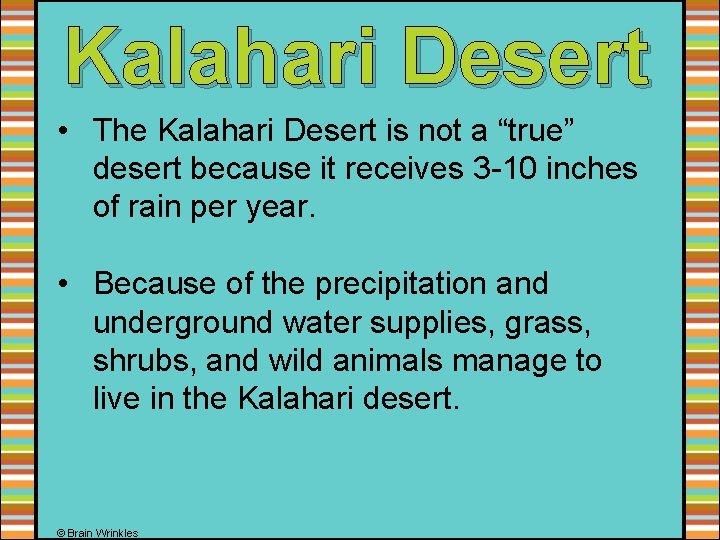 """Kalahari Desert • The Kalahari Desert is not a """"true"""" desert because it receives"""