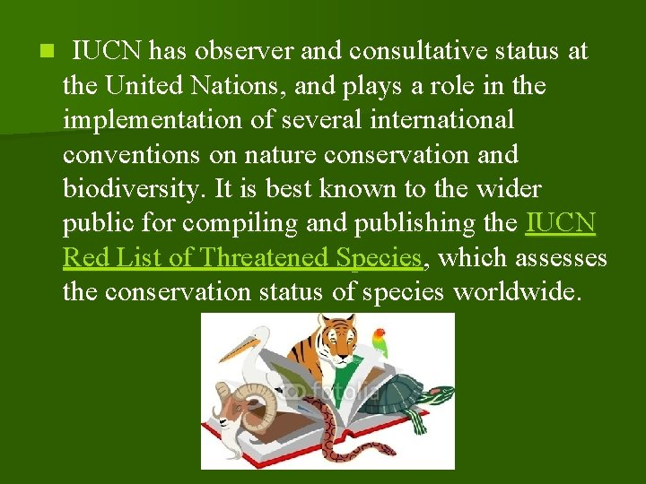 n IUCN has observer and consultative status at the United Nations, and plays a