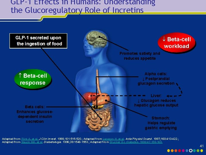 GLP-1 Effects in Humans: Understanding the Glucoregulatory Role of Incretins Promotes satiety and reduces